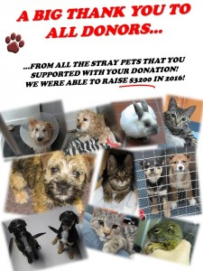 stray_pet_fund_result_donation_2015